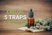 All About Where to Buy Cbd Essential oil